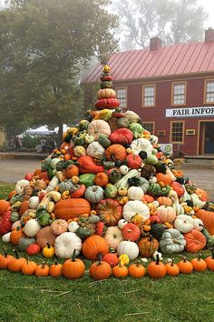 Pumpkin show stopper. Shopping at the Country Living Fair in Columbus, Ohio. Country Living Fair, Country Fair, Autumn Scenes, Autumn Aesthetic, Fall Pictures, Fall Harvest, Fall Pumpkins, Autumn Inspiration, Happy Fall
