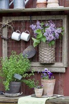 Lovely wall for a shed