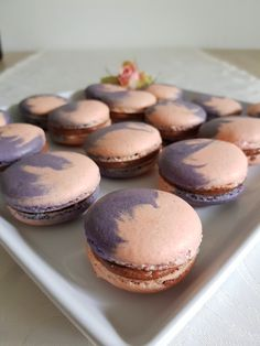 Macarons franțuzești. – Lorelley.blog Tasty, Yummy Food, Homemade Cakes, Cheesecakes, Macarons, Muffin, Favorite Recipes, Sweets, Baking