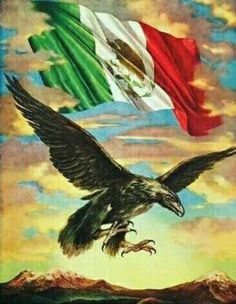 Cielo De Mexico (Sky Of Mexico) original vintage travel poster from Features eagle flying and a Mexican flag above him. Chicano Love, Chicano Art, Mexico Wallpaper, Aztecas Art, Azteca Tattoo, Mexican Artwork, Eagle Painting, Mexican Flags, Lowrider Art