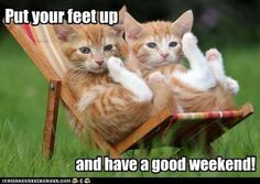 have a good weekend! :0)