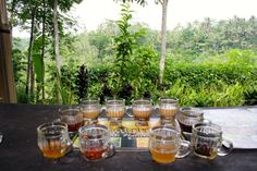In central Bali, their are a few organic family run acroturism places that double as a beautiful jungle background with a walk through of how they make their products and a wonderful tasting of teas and coffees.