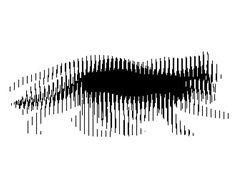 Crea tu propia ilusión óptica animada - Taringa!