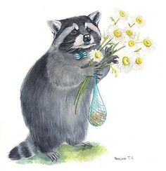 Racoon with flowers !