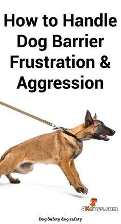 Dog Behavior On Prednisone And Dog Behavior Knoxville Tn Deaf