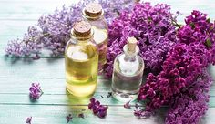4 Ways to Capture the Essence of Lilacs--If you already enjoy the fragrance of lilacs as they blossom in the spring, you'll absolutely love these projects that put the flowers to use. Clean Beauty, Diy Beauty, Lilac Blossom, Infused Oils, Flower Food, Facial Toner, Hobby Farms, Homemade Beauty, Natural Oils