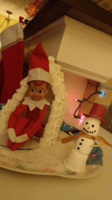 Elf on the Shelf Ideas: Archive