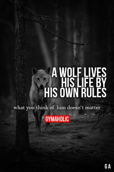 A WOLF LIVES HIS LIFE Friendship Quotes, Life Quotes, , Tattoos, Beautiful Places. Source by anapdiazm The post A wolf lives his life Friendship Quotes appeared first on Quotes Pin. Life Quotes Love, Great Quotes, Quotes To Live By, Me Quotes, Motivational Quotes, Inspirational Quotes, Super Quotes, Gymaholic, Fitness Quotes