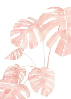 Iphone Background Wallpaper, Pastel Wallpaper, Aesthetic Iphone Wallpaper, Aesthetic Wallpapers, Screen Wallpaper, Iphone Backgrounds, Iphone Wallpapers, Wallpaper Quotes, Plant Painting