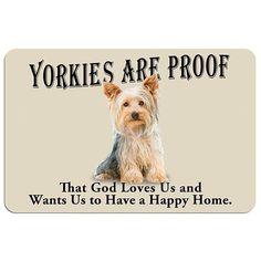 that yorkie love.