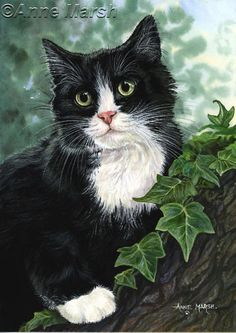 TUXEDO CAT HOLLY AND IVY PRINT OF PAINTING ANNE MARSH   eBay
