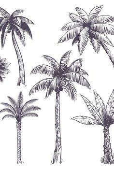 Tree Line Drawing, Tree Drawings Pencil, Palm Tree Drawing, Palm Tree Sketch, Tree Sketches, Palm Tree Tattoos, Surfboard Drawing, Coconut Tree Drawing, Blackpink Twitter