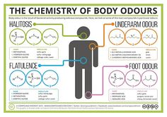 'The Chemistry of Body Odours' Poster by Compound Interest - My list of the most beautiful animals Chemistry Projects, Study Chemistry, Chemistry Classroom, Chemistry Notes, Chemistry Lessons, Teaching Chemistry, Chemistry Experiments, Chemistry Labs, Science Chemistry