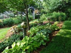 Serenity Gardening From Shade To Light   Kentucky Gardener Web Articles    Gardens And Plants   Pinterest   Shades, Love And Gardening