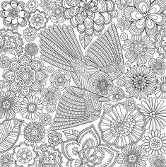 Blooms, Birds, and Butterflies Adult Coloring Book (31 stress-relieving designs) (Studio Series Artist's Coloring Book): Peter Pauper Press: 9781441320285: AmazonSmile: Books