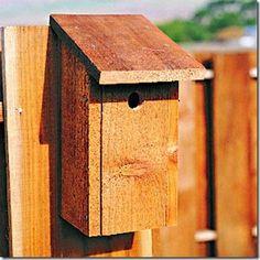 Construa uma casa de passarinhos bem simples