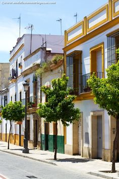 Famous for its sherry, motor sports and palaces, Jerez de la Frontera is another convenient base for exploring the South Western corner of Andalusia.  #Jerez #Andalusia #visitAndalusia #visitSpain #JerezDeLaFrontera #travelblog #travelphotography #Sherrycountry #wanderlust #exploretheworld