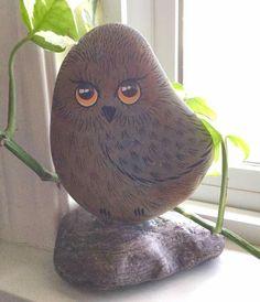 Owl rock