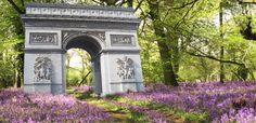 Paris-Homepage-Arc-Triomphe-bluebells-Spring