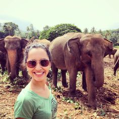 Blog Detalhes do Mundo | PINNAWALA ELEPHANT ORPHANAGE NO SRI LANKA