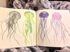 Millie Marotta Animal Kingdom Jellyfish