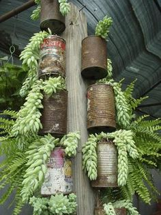 Could do this with a tree log and pots (so they don't rust.) OR s hooks and coffee mugs! Grow herbs