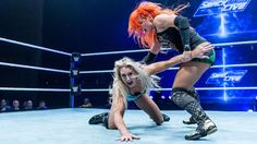 WWE Live Event in Bournemouth, England, May 2017: photos