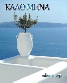 Unique Quotes, Mina, New Month, Happy Day, Good Morning, Vase, Beautiful, Geo, Home Decor