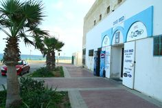 The instructors at Dive Med have worked with Tom Hanks, Ethan Hawk, Gina Davis and Bon Jovi. More info via http://www.unlogged.co.uk/malta/malta-island/eastern-malta/dive-med/zonqor-point#.UZzu55yeTK0