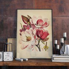 Magnolia Plant Vintage Illustration Magnolia Flower by dalumna