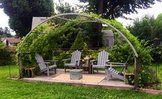 Re-purposed trampoline frame makes a beautiful arbor for wisteria to cover.  DILL-THEBEAU INTERIOR DESIGN