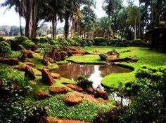Resultado de imagem para paisagismo e jardinagem