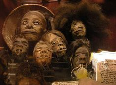 odditiesoflife:  The Gruesome History of Shrunken Heads  The ancient indigenous tribes of Ecuador and Peru were the people that transformed history with the practice of making shrunken heads. The heads were called tsantas.  As much flesh from the back and chest as possible was carefully preserved when the head was chopped off. This way, the head would not resemble a withered, contorted raisin later on. If no flesh was recovered, then a vine was used to stretch the skin.