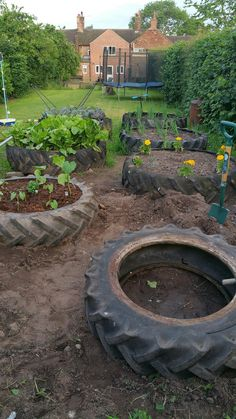 Upcycle Recycle Tyre  Garden