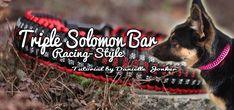 Triple Solomon Bar - Racing Style | Swiss Paracord
