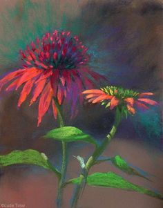 Coneflower Fancy Pants by Jude Tolar Coneflower 5 Pastel Color Palettes for 5 Floral Favorites Artists Network Chalk Pastel Art, Soft Pastel Art, Pastel Artwork, Oil Pastel Paintings, Chalk Pastels, Oil Pastels, Horse Paintings, Oil Pastel Drawings, Pastel Paper