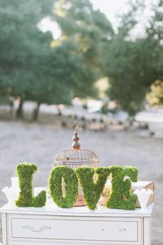 Moss Love Sign, cute!