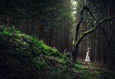 forest is an endless source of inspiration by baravavrova.deviantart.com on @DeviantArt