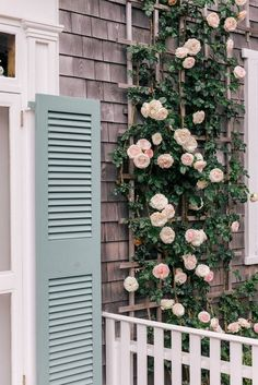 Climbing Roses on House Ideas_42