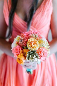 Suculenta y flor de Sud Africa