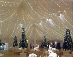 Tent with lights Wedding Tent Rentals Chicago IL - large wedding tents, wedding rentals, outdoor wedding tents, installed wedding tents, wedding tent accessories Wedding Reception Planning, Tent Wedding, Wedding Rentals, Wedding Ideas, Wedding Stuff, Wedding Ceremony, Wedding Planner, Wedding Draping, Dream Wedding