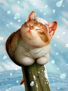 makoto Muramatsu cat illustration oh this makes me miss my Tribble kitty Cute Kittens, Cats And Kittens, Cats Bus, Animals And Pets, Cute Animals, Wild Animals, Image Chat, Illustration Art, Illustrations