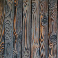 Shou Sugi Ban Burnt Wood Siding Green Home Guide Ecohome Wood Cladding Exterior, Timber Cladding, Wood Siding, Wall Exterior, Wood Paneling, Into The Woods, Charred Wood, Got Wood, Timber Wood