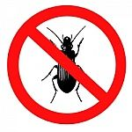 get rid of fleas tick bugs cockroaches natural non toxic bug treatment mage doge mites bed bugs
