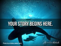 Your story begins here . . . ocean version...writing prompt with visual