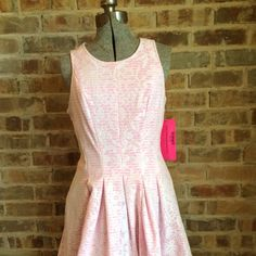 NWT Betsey Johnson Pink & White Lace Dress 8 Adorable pink & white lace dress by Betsey Johnson.  Background is pink and white stripes with a white lace overlay.  Very flattering fit.  Silver exposed zipper along back.  Lined.  Size 8.  New with tags.  #betsyjohnson #easter #pink Betsey Johnson Dresses Midi