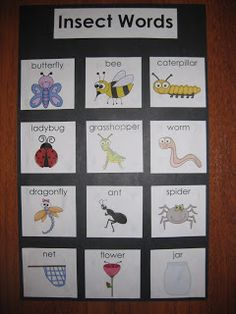 writing center words cards by themes