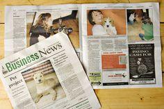 Expert Photography Marketing Ideas - local media - puppy love