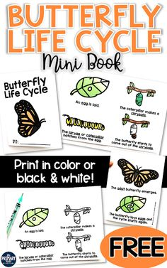 Butterfly Life Cycle FREEBIE, FREE Butterfly Life Cycle Mini Book The Primary Post: Butterfly Life Cycle Mini Book Freebie