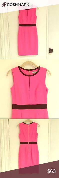Calvin Klein Hot Pink Dress This hot pink Calvin Klein dress (size 2) has black accents and a gold zipper down the back. It is extremely flattering and has never been worn! Fits more like a 4. Calvin Klein Dresses Midi